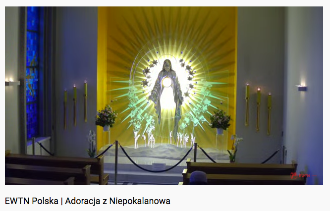 Read more about the article LIVE Perpetual Eucharistic Adoration from Poland